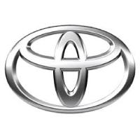 Wild-Our-Bakkies-Toyota